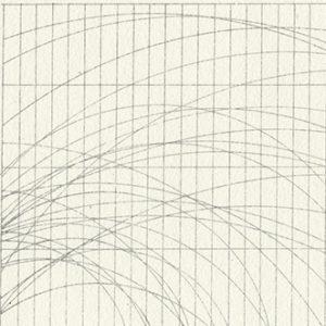 CHART_02 /  Litografia /  20x30cm /  2015