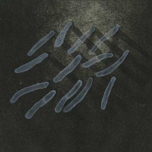 REBASE_02 /  Litografia na marmurze /  15x12cm /  2017