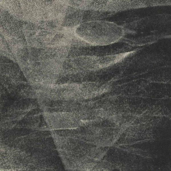Mezzotinta na kamieniu na bazie transferu wydruku, Anna Trojanowska