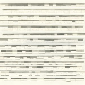 252 SHADES OF GREY /  lithograph /  74x51 cm /  2020